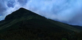 Hiking Adventure - Elephant Hill